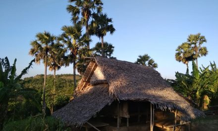 Dari Moa ke Kisar: Mencatat Jejak  Harapan dan Persaudaraan  di Bumi Kalwedo