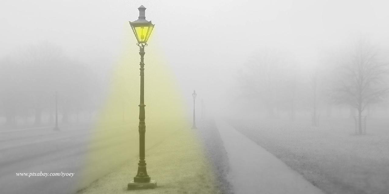 Jalanan Sunyi, Dedaunan Kering, dan Denyar Lampu
